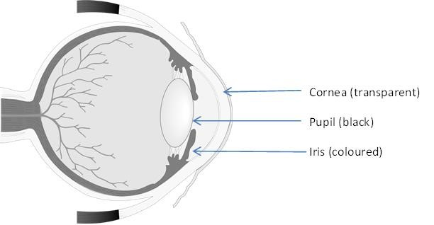 Eye diagram