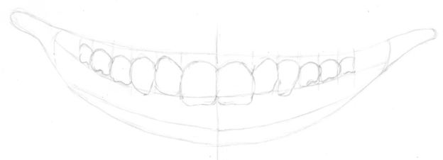 Mouth drawing with tooth lengths added