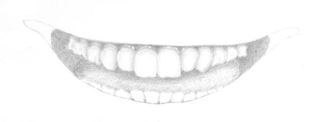 Gum drawing with highlights added