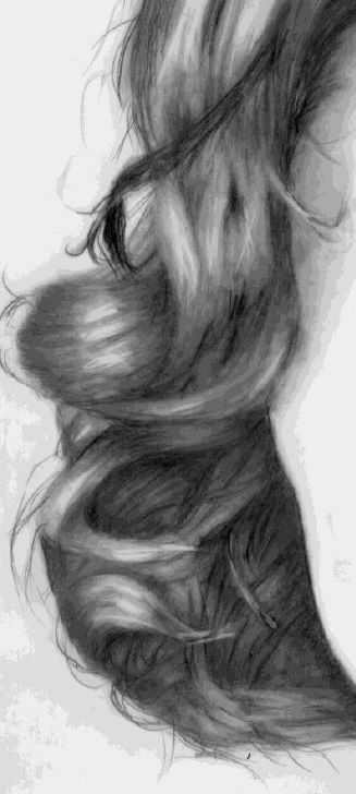 Completed hair drawing