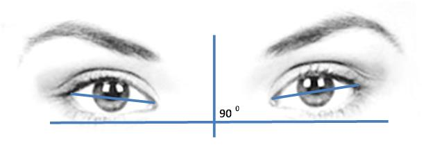 The slant of the eye measurement