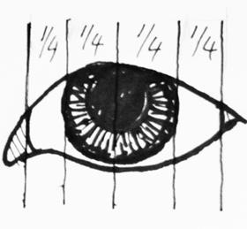 Measuring the pupil and iris