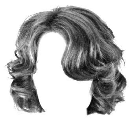 Hair reference photo