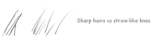 How to draw hair tips correctly