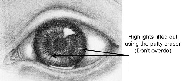 Iris secondary highlights using putty eraser