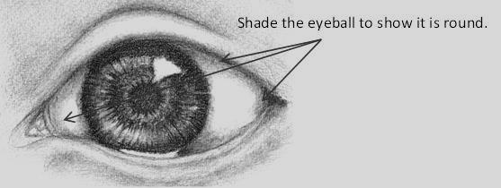 Shading the eyeball
