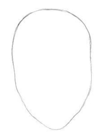 Draw the face outlines