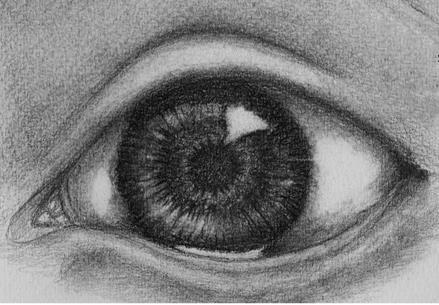 Shading the eye creases
