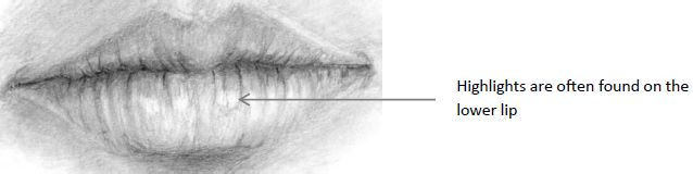 Mouth drawing showing lower lipp highlights
