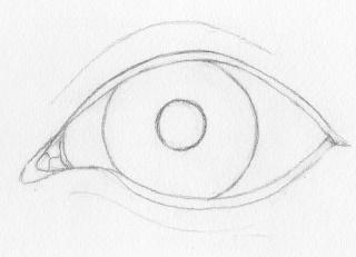 Eye crease outlines