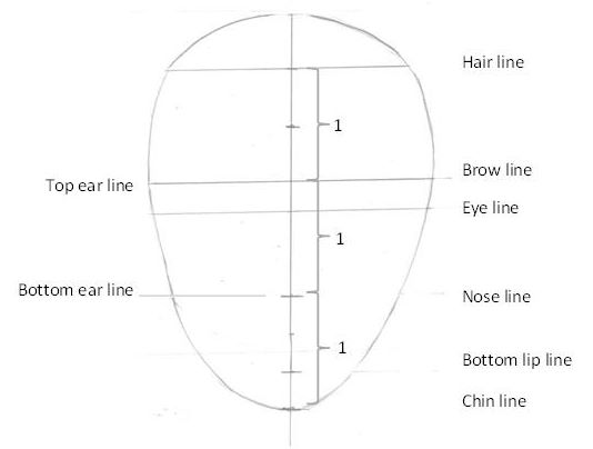 Features of the head
