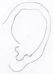 Complete ear outline