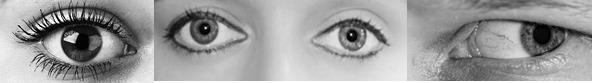 Eye creases examples